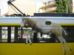 Oryx riding public transportation in Berlin