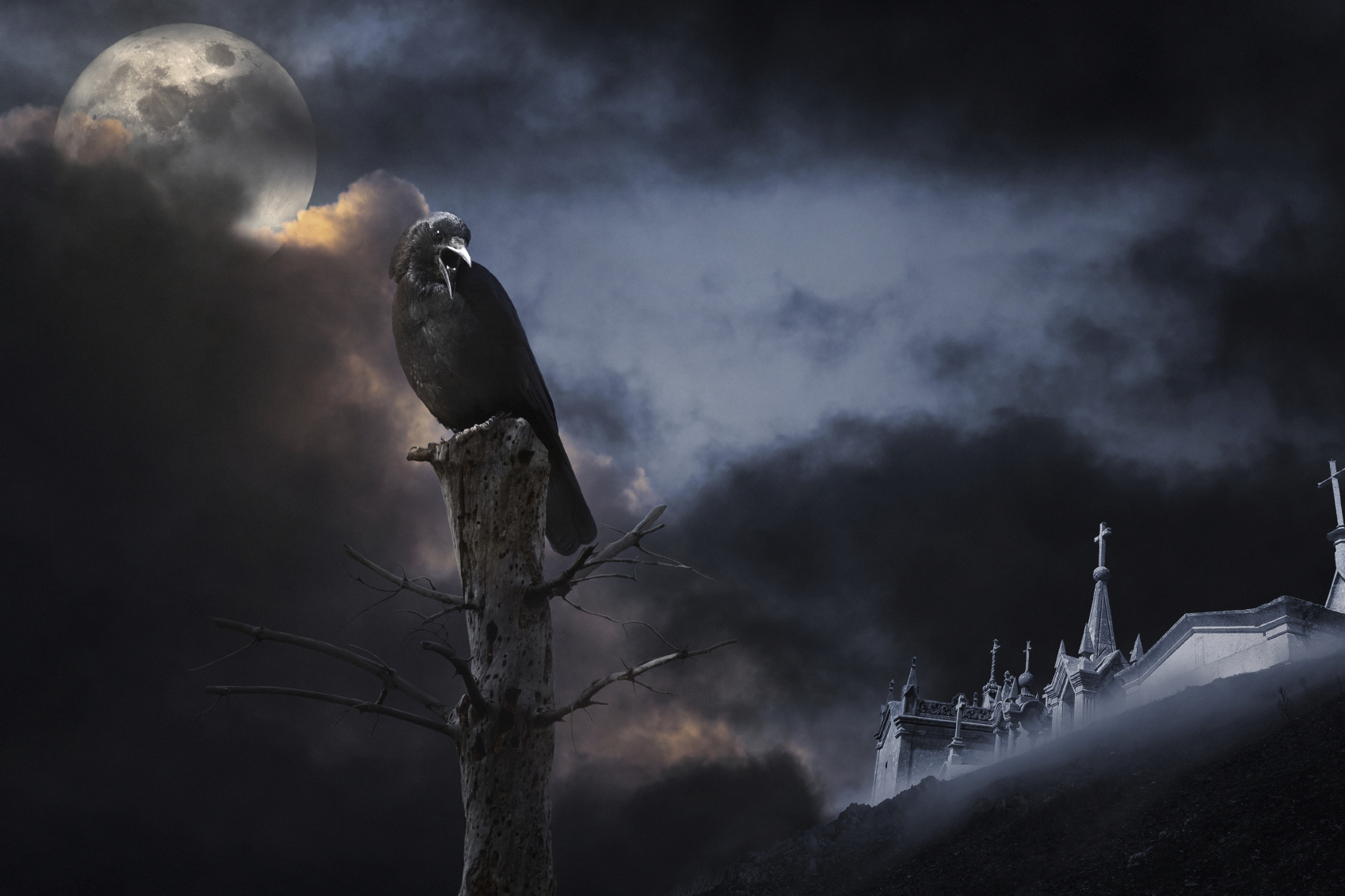 Ravens populate the mythology of many cultures throughout the northern ...