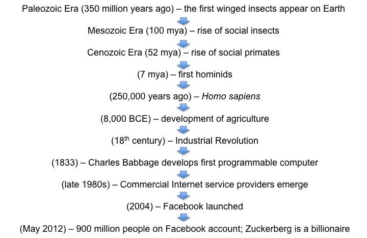 wasps to Facebook timeline