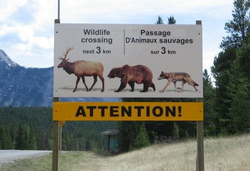 Next-Door Nature, wildlife crossing sign, Canada